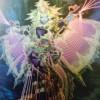 【遊戯王 海外の反応】 エルシャドール・アノマリリス 水シャドールきた! 【クロスオーバー・ソウルズ】 /