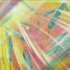 【遊戯王 新規考察】 ハーピィの羽根吹雪! ついにハーピィも相手ターンの効果妨害へ・・・!
