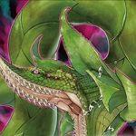 【遊戯王 海外の反応】《捕食植物ヴェルデ・アナコンダ》 これが今回のハリファイバーかな?